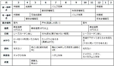 カトレア年間管理表2