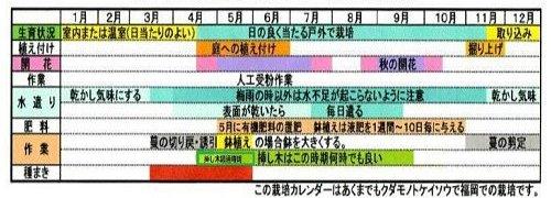 パッションフルーツ年間管理表.jpg