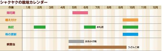芍薬年間管理表.jpg